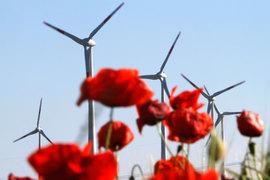 На долю ветряных электростанций в Великобритании приходится 7,7% производимой электроэнергии, в Германии – 11,4%
