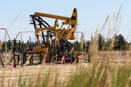 Период низких цен на сырьевые товары будет затяжным, предупредила на днях директор МВФ Кристин Лагард