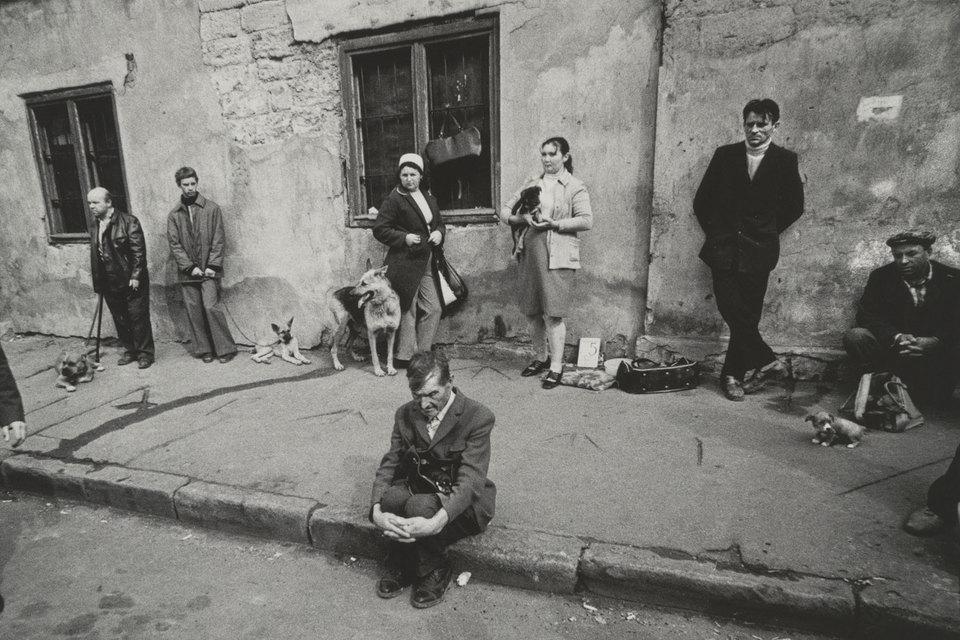 Андрей Баскаков. Из серии «Птичий рынок». Одесса, 1976 г.