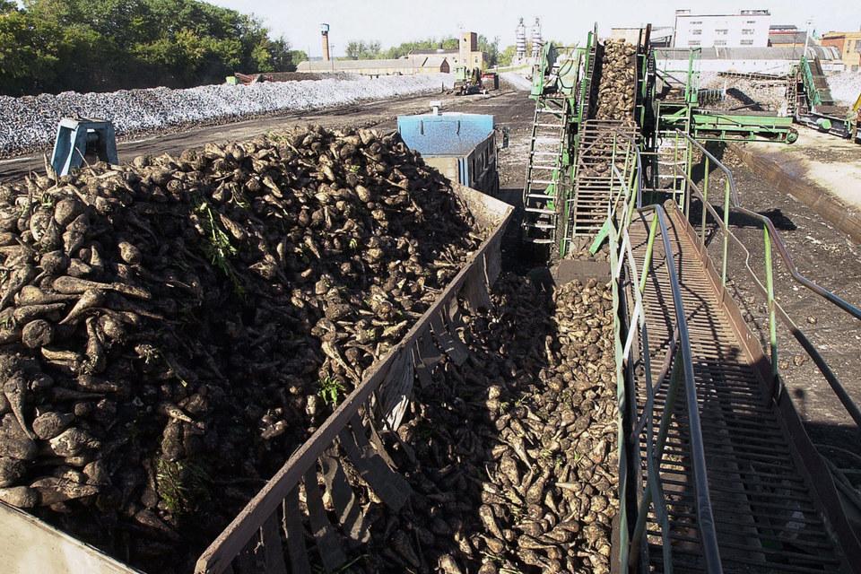 «Разгуляй» продает пять элеваторов и четыре сахарных завода