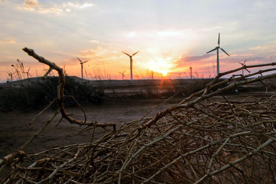 Программа поддержки зеленой энергетики была запущена в 2013 г.
