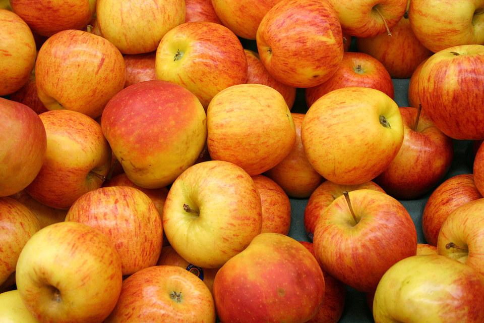 АФК «Система» расширяет агропромышленный бизнес