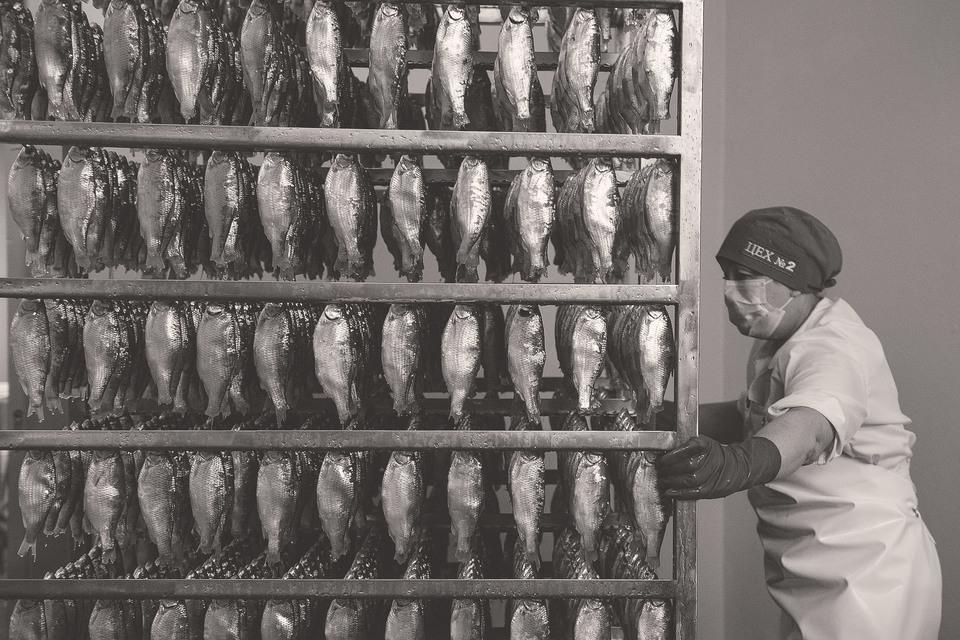 Крупнейшие переработчики и ритейлеры сегодня закупают только рыбу, прошедшую экологическую сертификацию