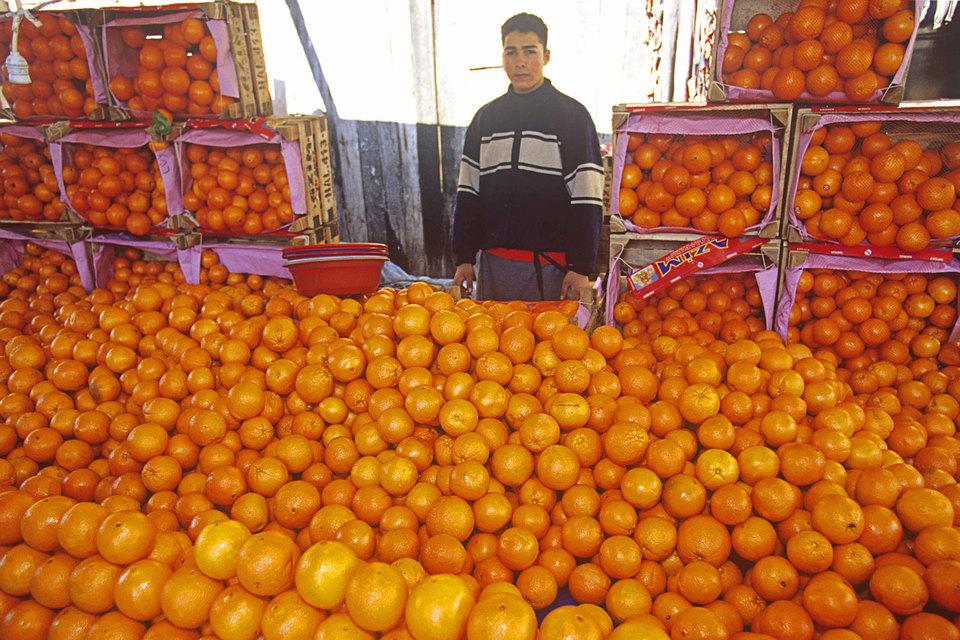 Указом вводится запрет или ограничение на работу в России турецких организаций и на ввоз из Турции отдельных товаров, перечень которых определит правительство