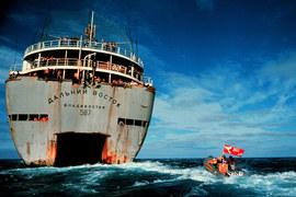 Гринписовцы догоняют советское китобойное судно, чтобы заслонить собой обреченного кита