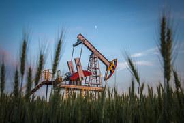 Светлое будущее низких налогов не за горами, верят нефтяники