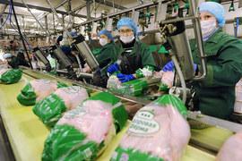 «Уралбройлер» – один из крупнейших производителей мяса птицы и свинины в Уральском регионе