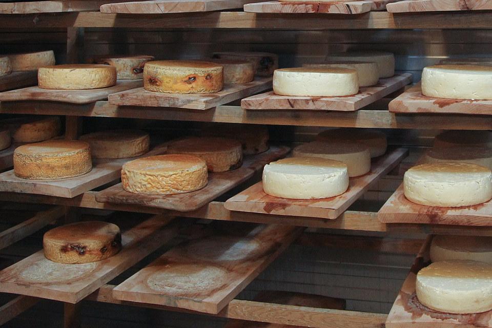 Санитарные нормы запрещают выпускать сыр из сырого молока, как во Франции, и вкус получается не таким ярким