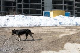 Московские чиновники придумали, как еще бороться с долгостроем
