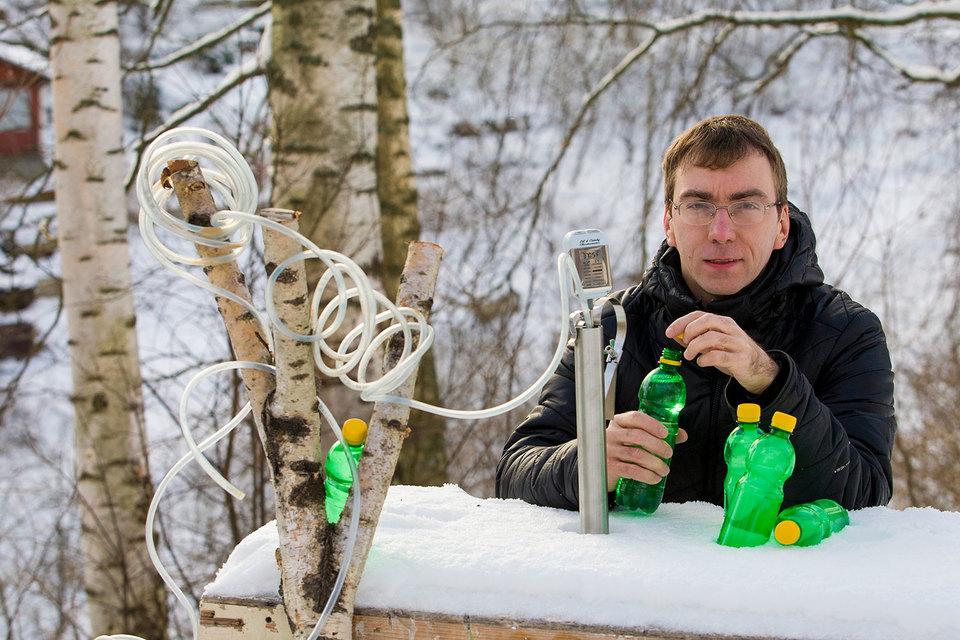 Алексей Грибин сконструировал для сбора древесного сока фирменный сокопровод – из медицинских трубочек и капельницы