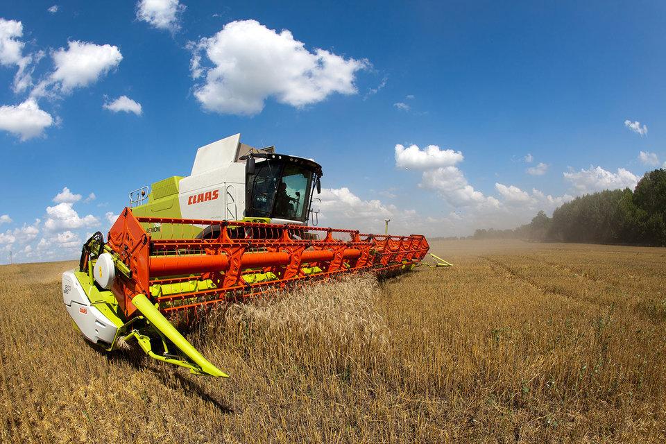 В ближайшие 15 лет Россия увеличит производство зерновых на 25%, а экспорт – на 61%, прогнозирует Минсельхоз