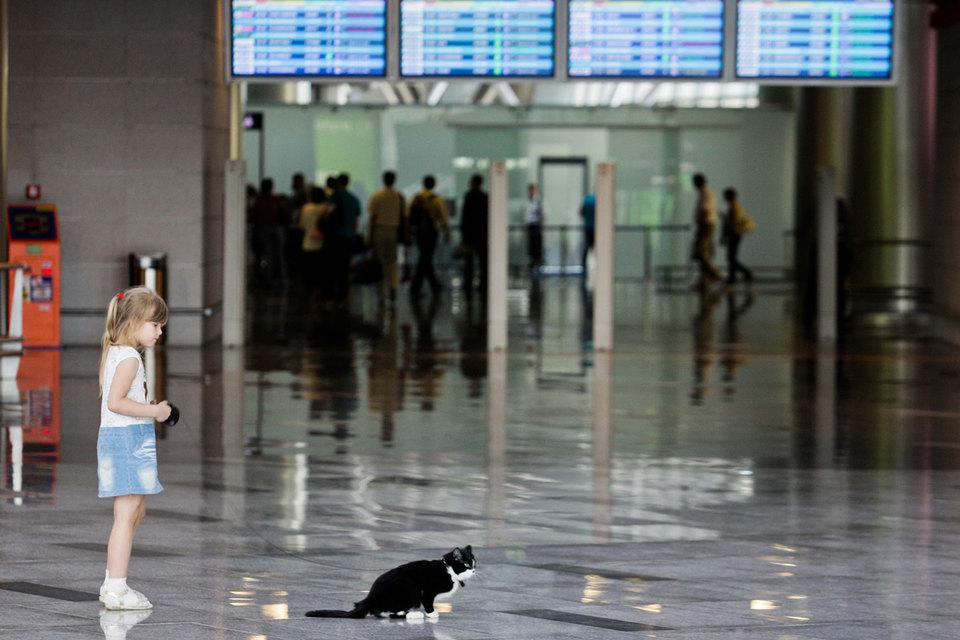 Государство будет опекать аэропорты в течение пяти лет после консолидации