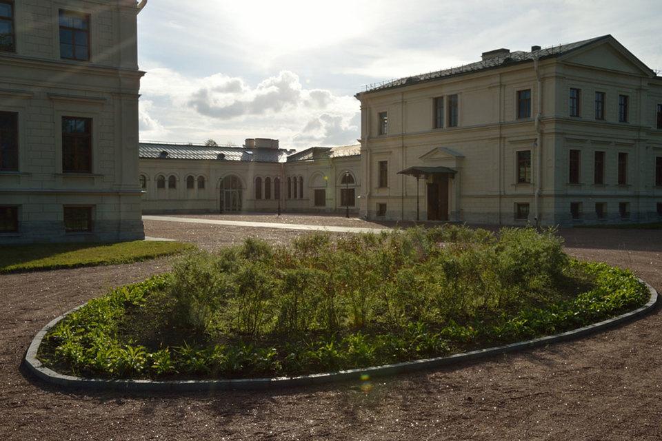 Осенью 2015 г. в «Михайловской даче» началось обучение