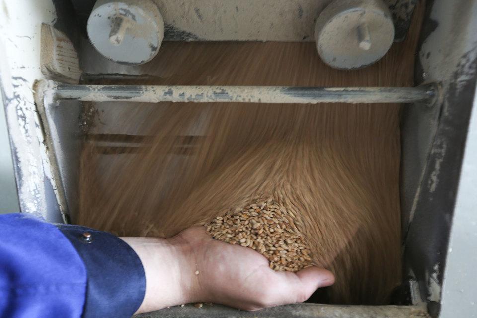 Продавая зерно экспортерам, НКХП лишь поддерживает основной бизнес, уверяет представитель компании