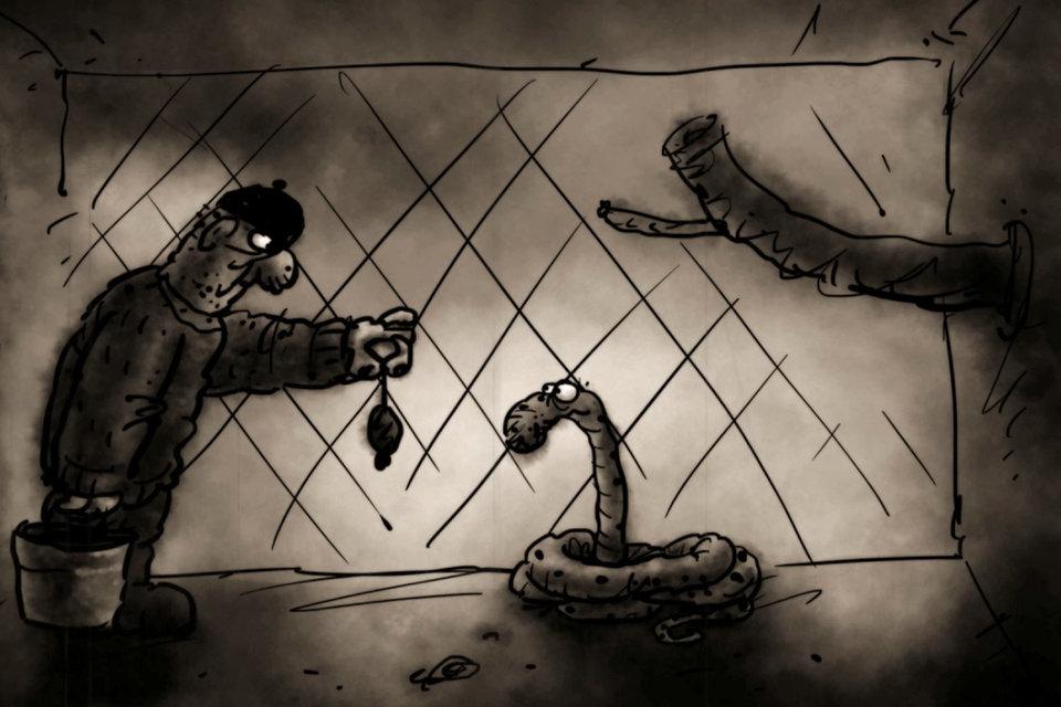 Фильм «Питон и сторож» рассказывает о необычной дружбе