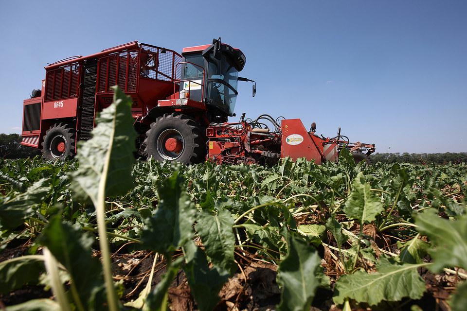 Индустриальный кластер «Кубань» разместится на землях одноименного агрохолдинга