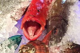 Рестораны ищут способы привлекать гостей в кризис, один из самых надежных - предлагать по специальным ценам то, что всегда было дорого, например, рыбу и морепродукты