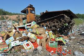 Давление на поставщиков оказалось делом бесплодным – пострадали, кажется, только российские  потребители