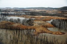Длительная засуха и обмеление водохранилища грозят остановкой гигантской гидроэлектростанции El Guri