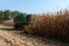 На покупку земли в Ростовской области АФК «Система» может потратить свыше 500 млн руб.