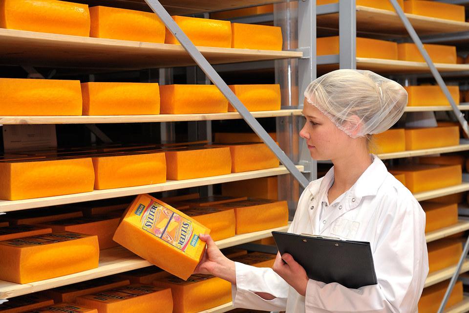 DMK сможет выпускать в России сыр