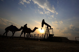 Страны Персидского залива стремительно наращивают госдолг