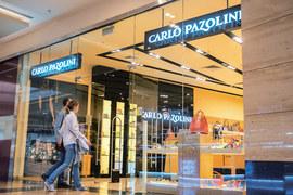 Проблемы у Carlo Pazolini возникли из-за резкой девальвации рубля в декабре 2014 г. на фоне снижения продаж