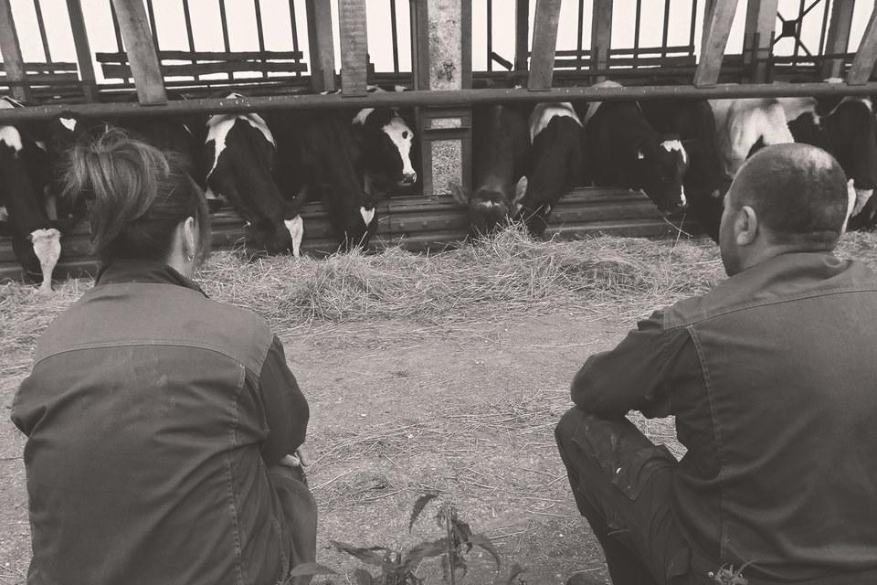 Государству следовало бы отказаться от всех налогов на фермеров и переработчиков отечественного продовольственного сырья