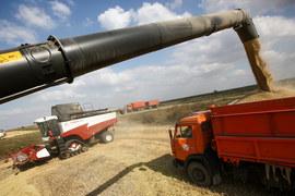 «АФГ Националь» – крупнейший производитель риса в стране
