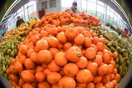 С 1 января 2016 г. Россия запретила ввоз из Турции некоторых фруктов и овощей