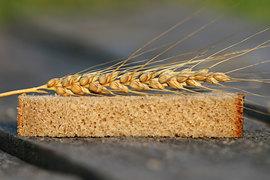 Прогноз Минсельхоза, что в 2016 г. Россия соберет 110 млн т зерна, может оказаться слишком скромным