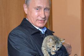 Владимир Путин призывает россиян поторопиться с новосельем