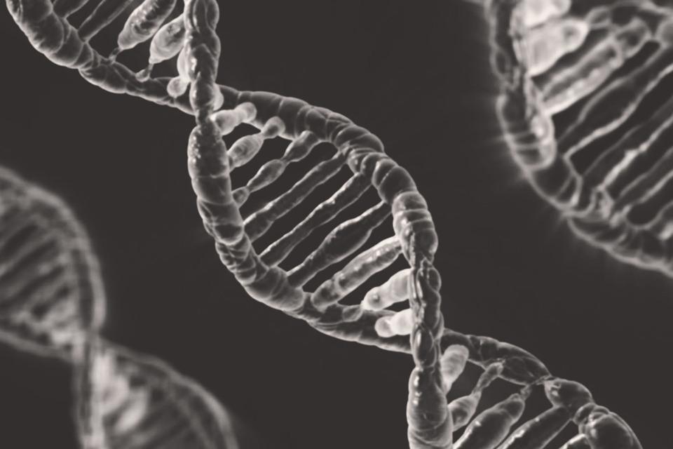 Генетический набор каждого человека может иметь очень серьезное влияние на его жизнь