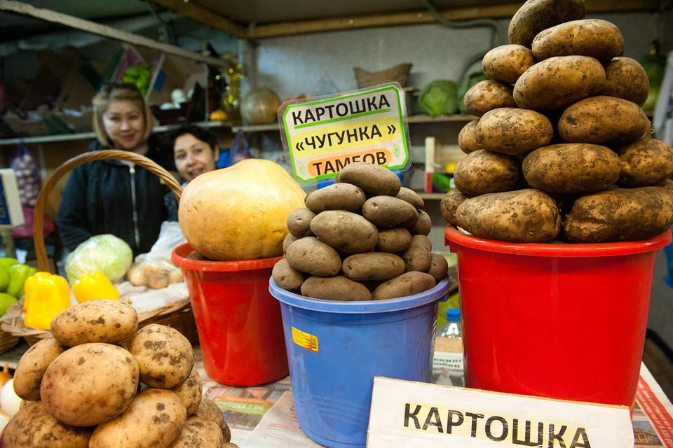 Картофель может подорожать к зиме
