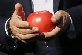 Турция не отделается помидорами, обещал Путин, теперь конфликт улажен