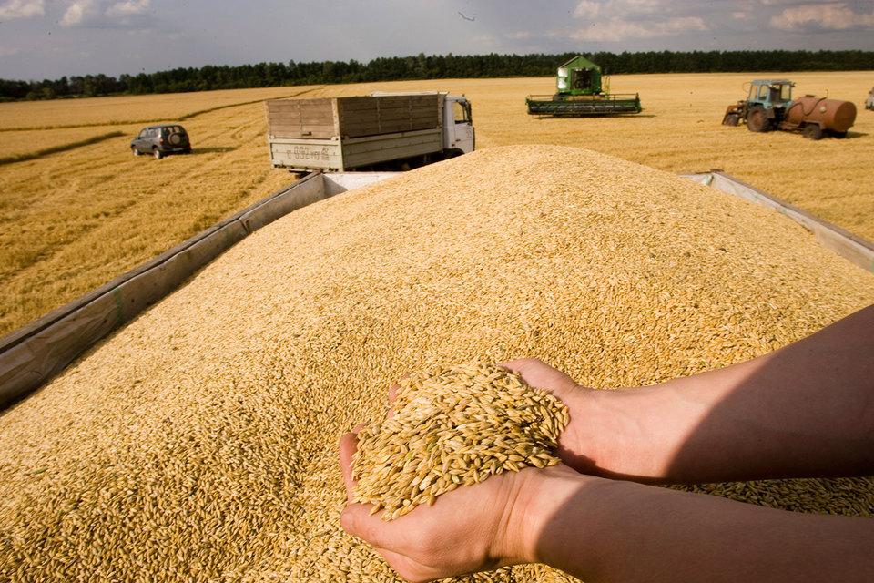 Осенью, когда цены падают после поступления урожая на рынок, государство закупает зерно у производителей, чтобы повысить цены