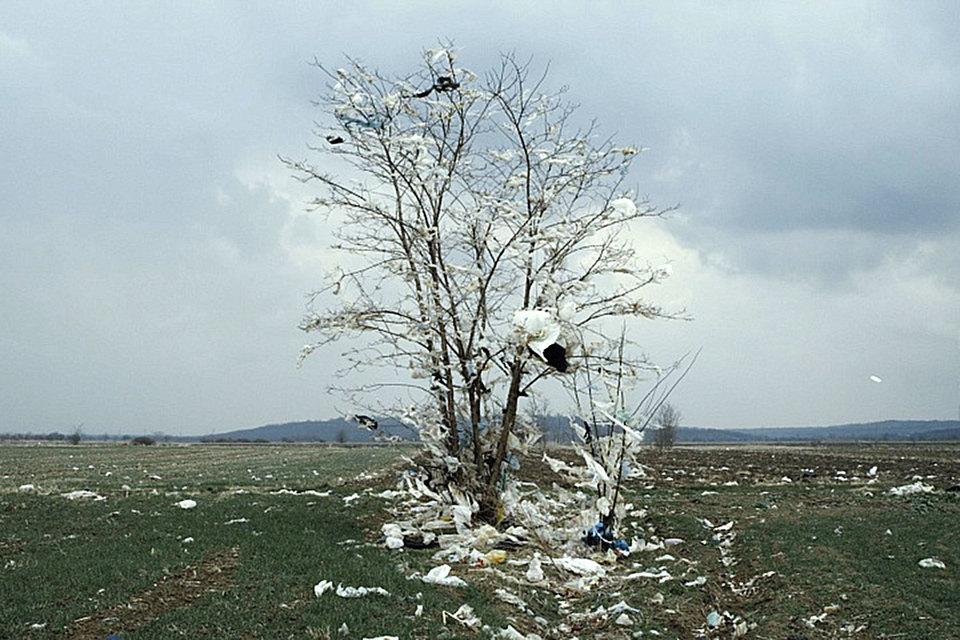 В фильме «Глубина два» пейзажи говорят о людской трагедии