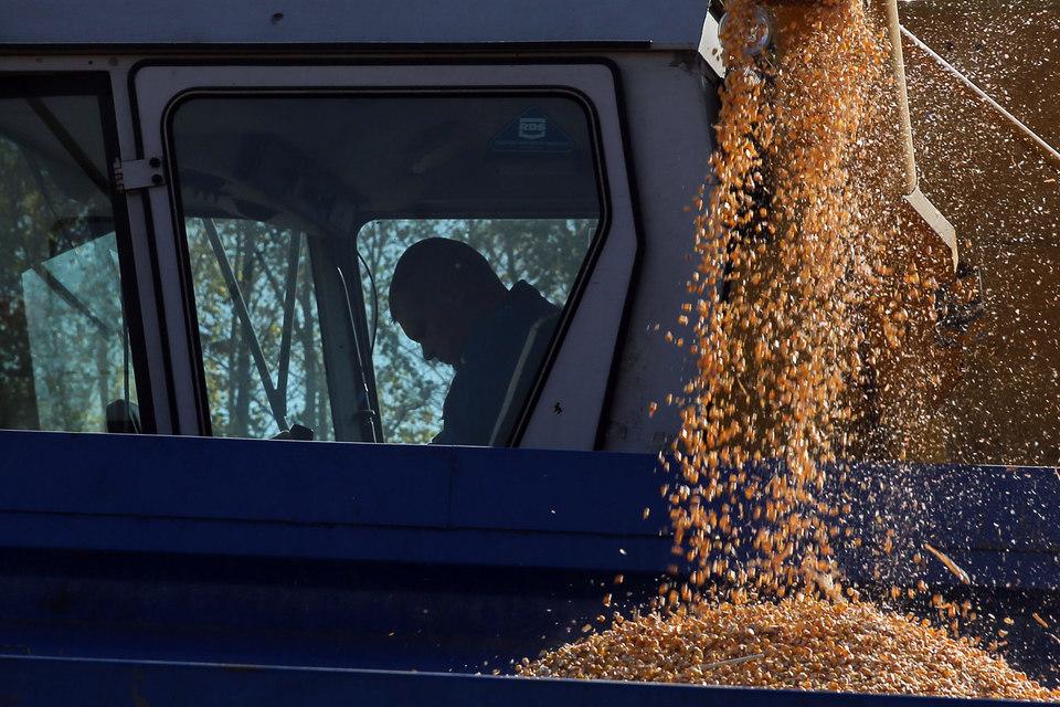 Зерно может ехать быстрее