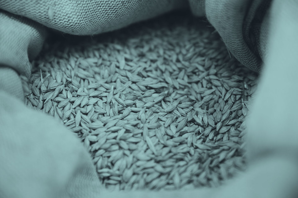 Мешок с зерном —вещь недели