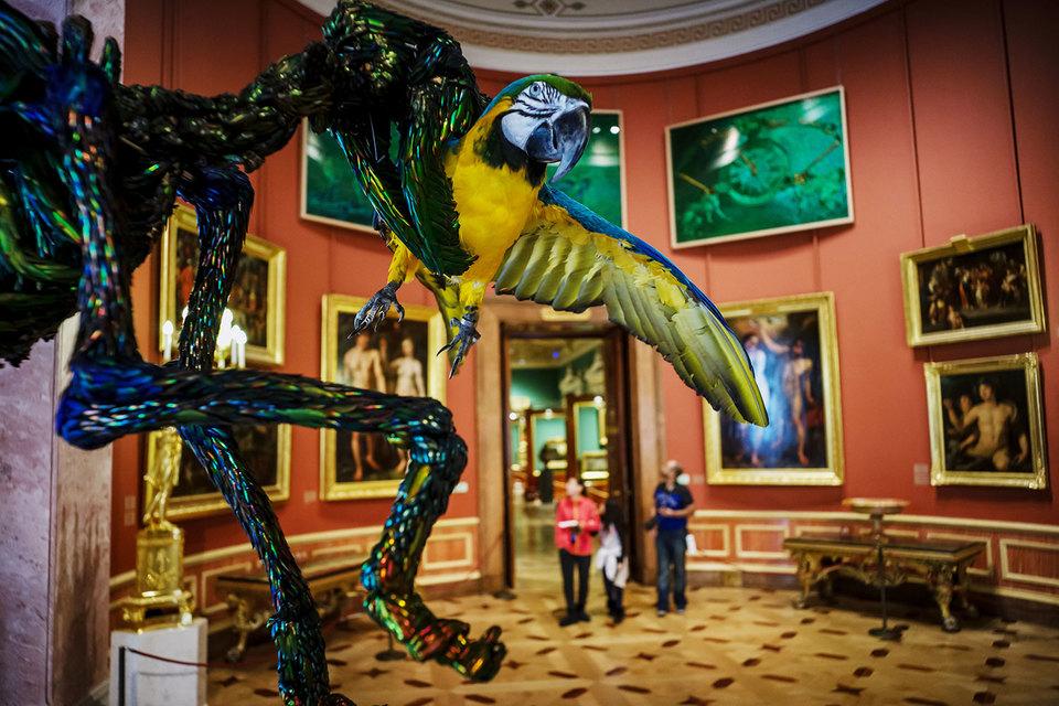 Выставка Яна Фабра изменила залы Эрмитажа