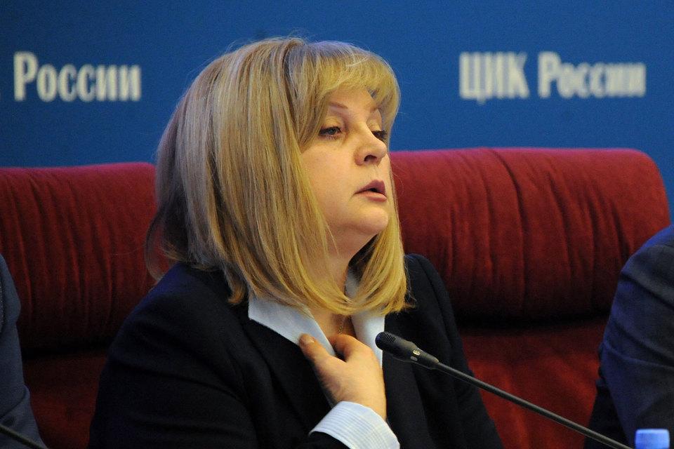 Элле Памфиловой нравится мысль о том, что законы о выборах должны стать более ясными