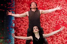В «Федре» артисты Белого театра танца выступают на ковре из розовых лепестков