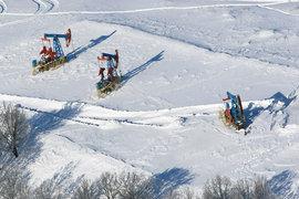 На обсуждение вопроса о снижении добычи нефти ушло всего полчаса