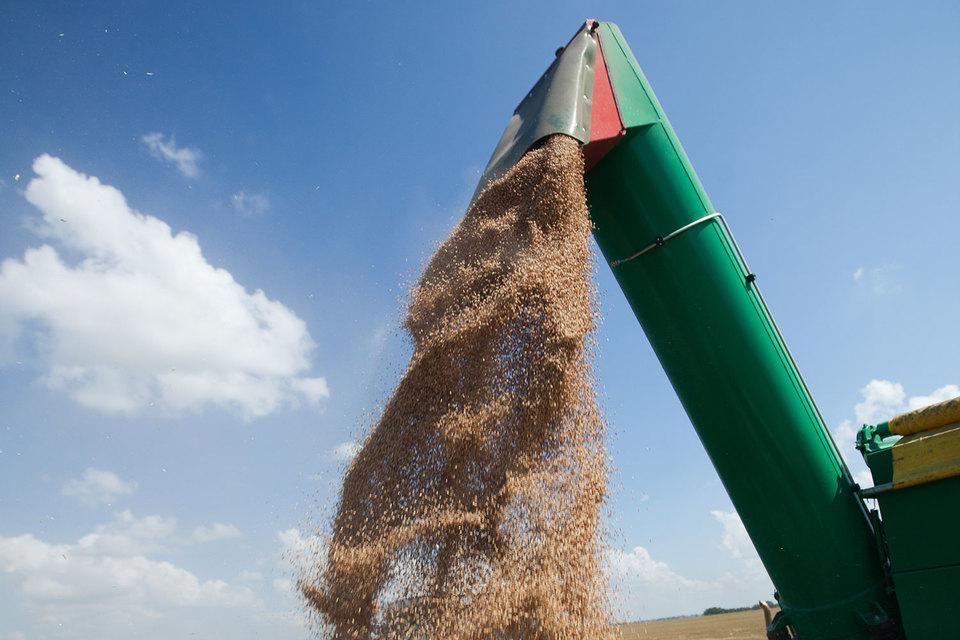 Экспорт зерна пока отстает от темпов прошлого года