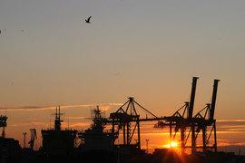 В ноябре впервые за год вырос грузооборот порта Санкт-Петербург