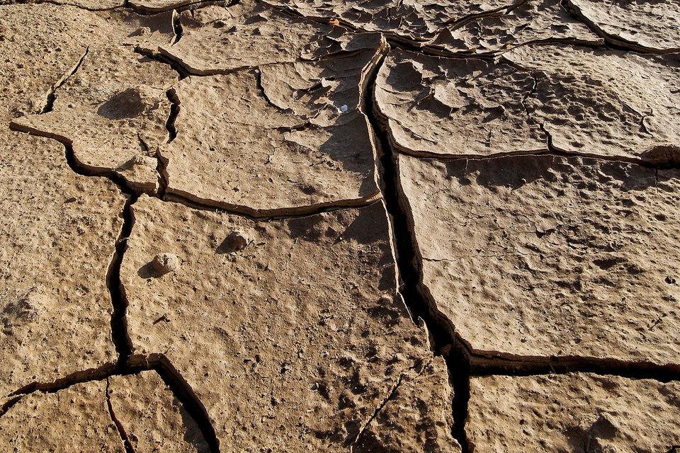 Впервые за 10 лет экология признана главной угрозой для мировой стабильности