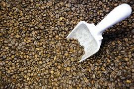 Кофе робуста подешевел до минимума за пять лет