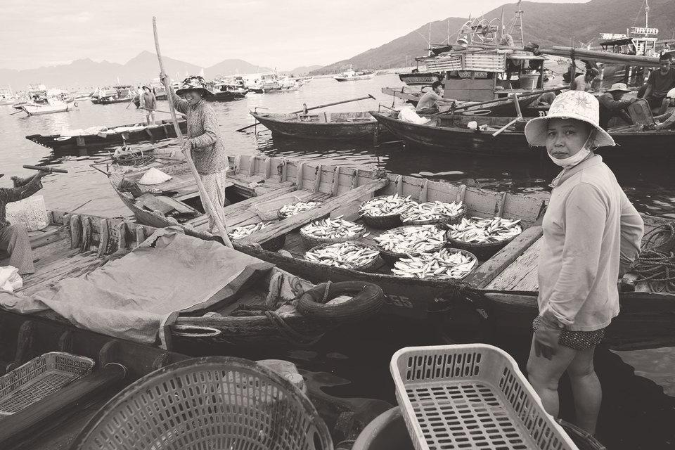 Картель пангасиуса (рыба импортируется из Вьетнама) российские суды не признали
