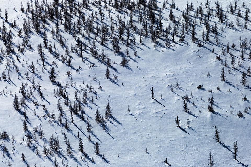 Земли природоохранных территорий можно купить в собственность, но не все