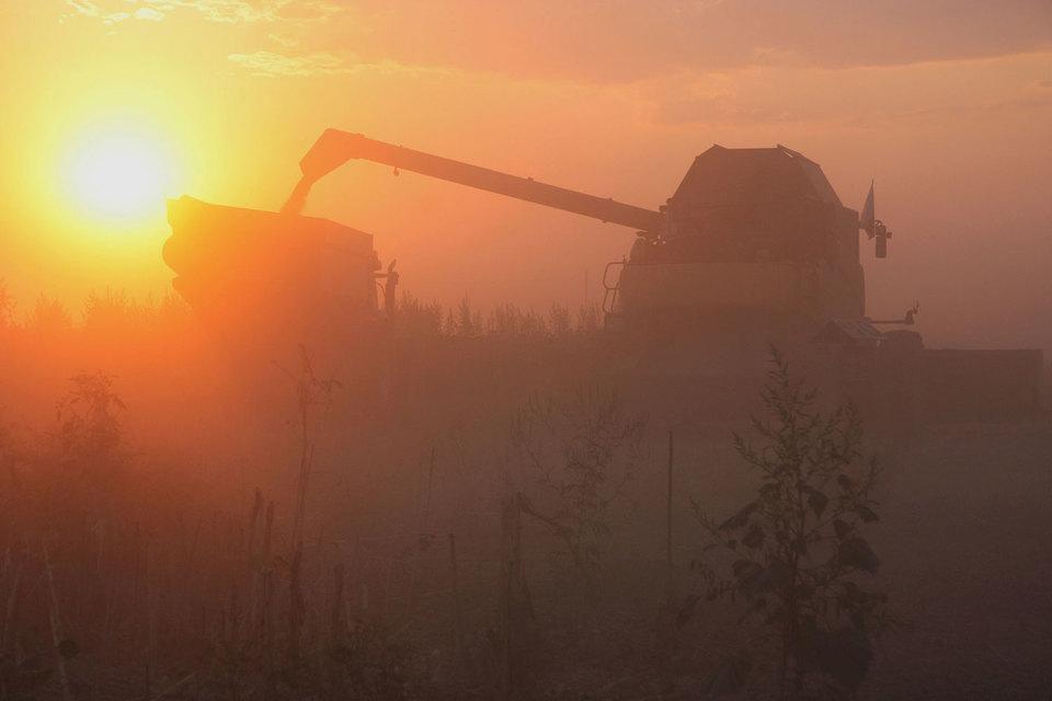 ВТБ готов продать аграрную компанию Irrico